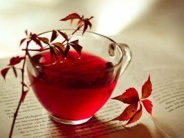 10+ roera.ro ideas | diete, sănătate, grăsime