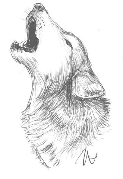 Los 65 Mejores Dibujos A Lapiz Faciles Para Dibujar Copiar Y Aprender Saberimagenes Com Esbozo De Lobo Dibujar Arte Lobos A Lapiz