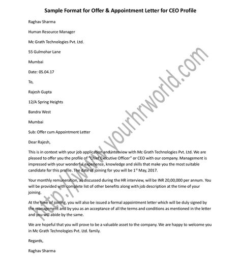 Sample format for CEO offer and appointment letter in Word - sample appointment letter