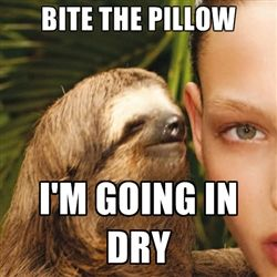 sloth meme- haha so gross