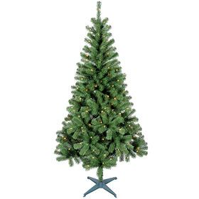 C3 6ft Pre Lit Ashford Spruce Christmas Tree Spruce Christmas Tree Christmas Tree Peacock Christmas Tree