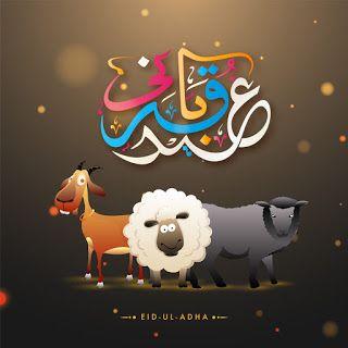 صور عيد الاضحى 2020 اجمل الصور لعيد الاضحى المبارك Eid Greetings Eid Ul Adha Eid Wallpaper