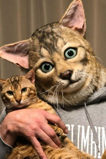 You Can Now Buy A Custom Replica Head Of Your Cat And This Is What It Looks Like To Lose Control Of Our Lives Pet Replica Cat Mask Japanese Cat