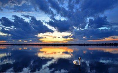 ผลการค้นหารูปภาพสำหรับ swan ;lake hdr