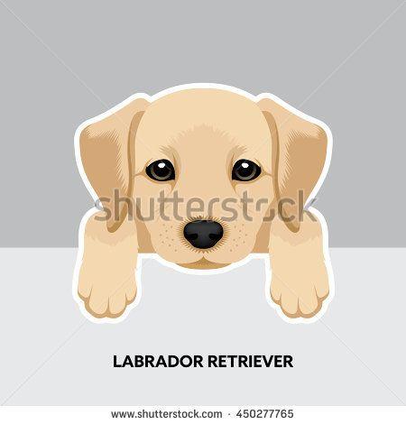 Vector Illustration Portrait Of Labrador Retriever Puppy Dog