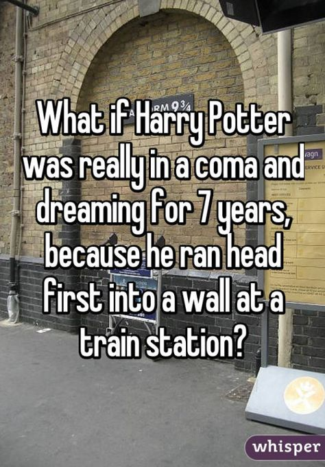 What if Harry Potter was really in a coma and dreaming for 7 years, because he ran head first into a wall at a train station?