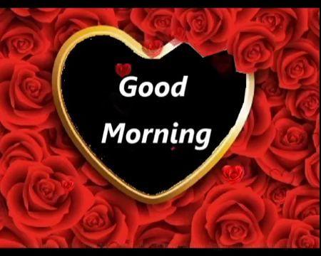 Good Morning In Funny Hatke Style Whatsapp Gif Good Morning Video Good Morning Wishes Good Morning Video Songs Morning Wish