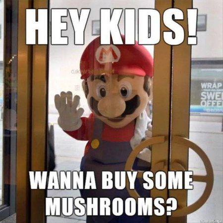 Memes That Make You Lol Irl 5 Page 1 Mario Funny Mario Memes Super Mario Memes