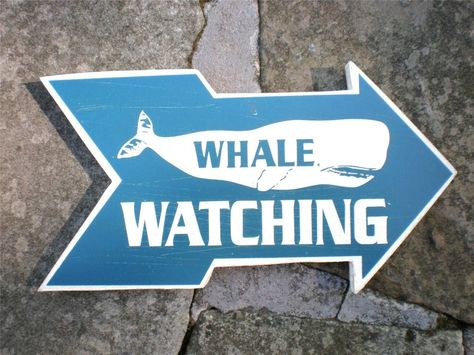 Vintage Style Whale Watching Nautical Distressed Wooden Sign 12x24 WOW !!
