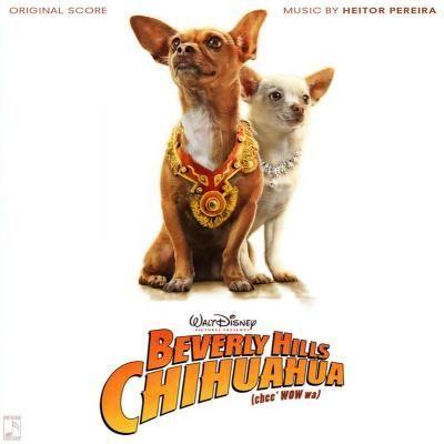 Beverly Hills Chihuahua Soundtrack Lyrics Chihuahua Disney Dogs