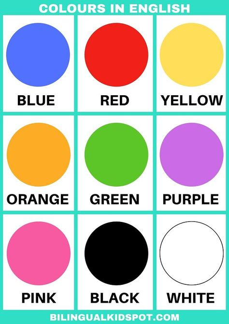 Colours in English #ESL #printable