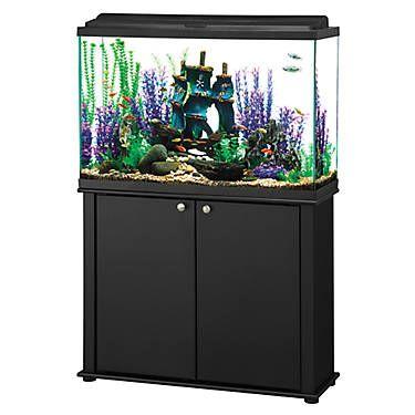 Aqueon 45 Gallon Led Aquarium Ensemble Glass Fish Tanks 45 Gallon Fish Tank Aquarium