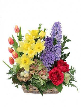 Blue Hyacinth Yellow Daffodils Hot Pink Garden Roses Orange And Yellow Tulips And Green Basket Flower Arrangements Flower Shop Network Flower Arrangements