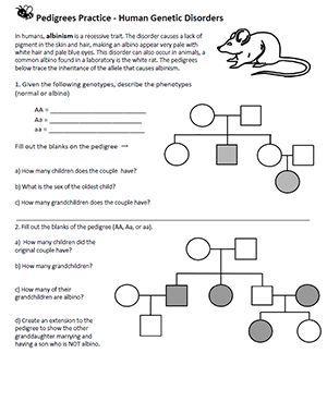Pedigrees Human Genetic Disorders Genetics Biology College Teaching Biology