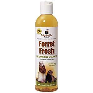 Best Ferret Shampoo In The Market Reviews 2019 My Life Pets Ferret Pet Ferret Shampoo