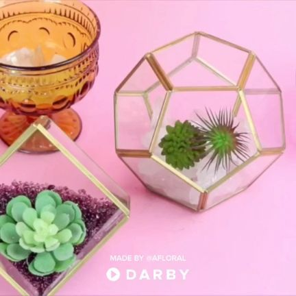 How to Make a Succulent Terrarium #darbysmart #earthday #succulents #terrariums #diyproject #diy #plants #homedecor