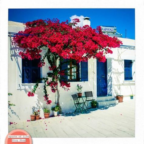 Greece photography, print set, Greece pictures, set of 4 prints, square print, travel photography, s