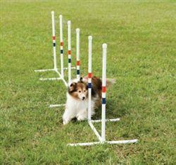 Petsafe Weave Poles Affordable Home Agility Training Equipment