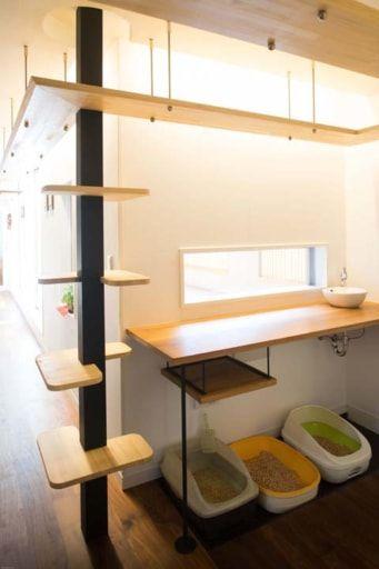注文住宅事例 まるでネコの家に 人間が住まわせてもらっている家 Sumai 日刊住まい 家 ねこ インテリア 猫の家具