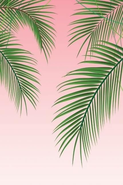59 Trendy Palm Tree Wallpaper Iphone Pink Palm Trees Wallpaper Tree Wallpaper Iphone Palm Trees Painting