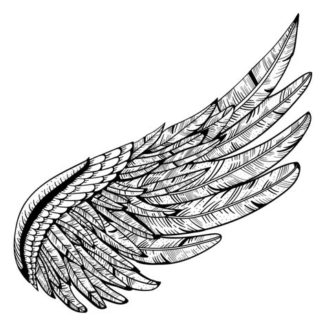 Https Www Searchpng Com Wp Content Uploads 2019 03 Wing Tattoo Png Image 715x715 Png Eagle Wing Tattoos Wings Tattoo Wing Tattoo Men