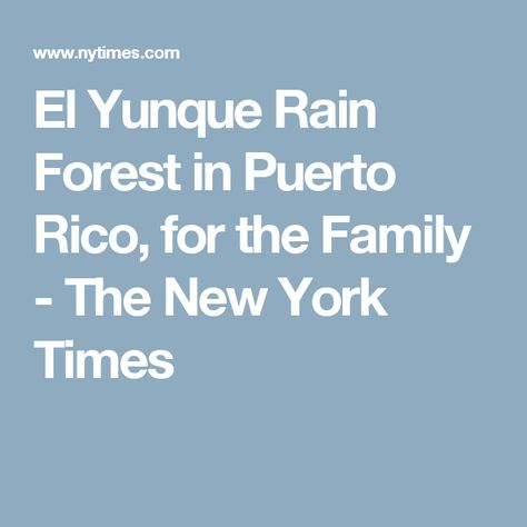 El Yunque Rain Forest in Puerto Rico, for the Family - The New York Times