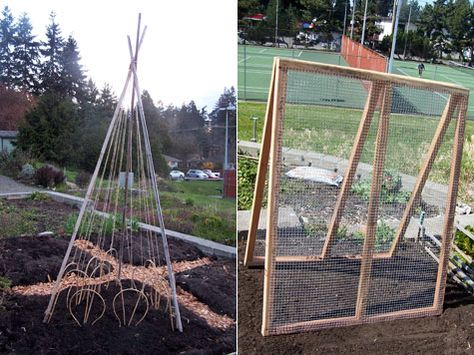 """""""I'd use chicken wire instead of hardware cloth."""""""