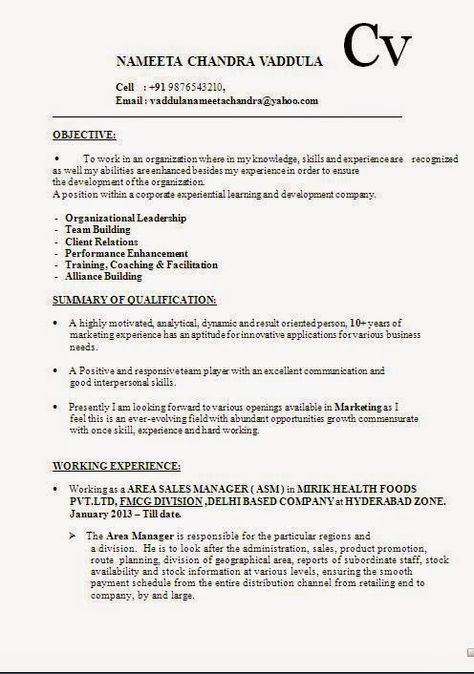 entry level resume templates Sample Template Example ofExcellent - channel sales manager sample resume