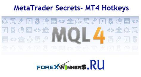Metatrader Secrets Mt4 Hotkeys Forex Winners Free Download