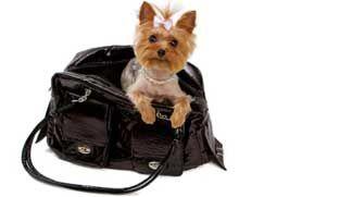 Truecare for pets reviews