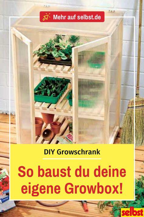 Growbox Selbst De In 2020 Gewachshaus Selber Bauen Garten Gewachshaus Gewachshaus