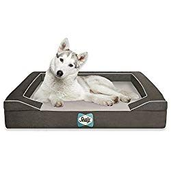 How To Keep Your Dog Cool In Summer Orthopedic Dog Bed Dog Bed Large Sealy Dog Bed