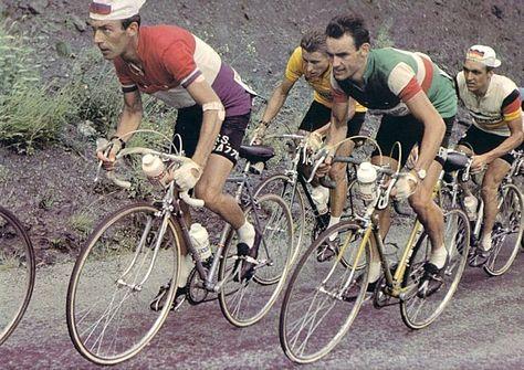 """""""Sur la photo du TDF 1961, Imério Massignan suit Charly Gaul avec en second plan, Jacques Anquetil, porteur de maillot jaune et l' Allemand Hans Junkerman."""""""