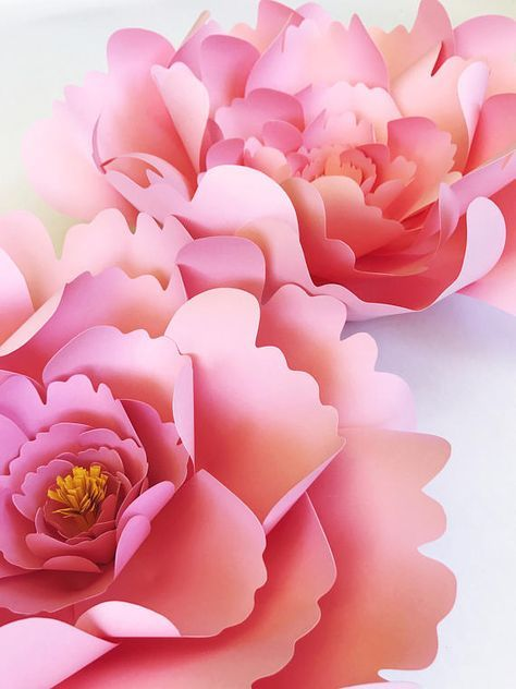 Large Peony Paper Flower Template Diy Instant Download Template