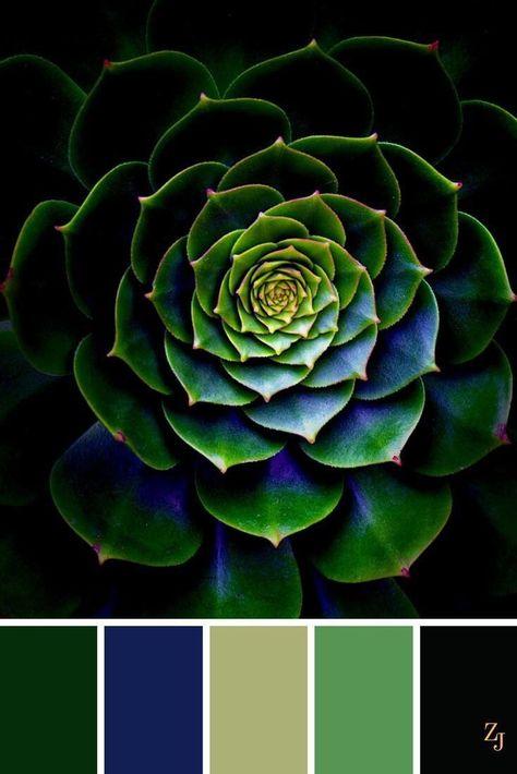 Color Schemes Colour Palettes, Green Colour Palette, Color Palate, Green Colors, Color Combos, Colours, Blue Green, Rich Colors, Dark Colors