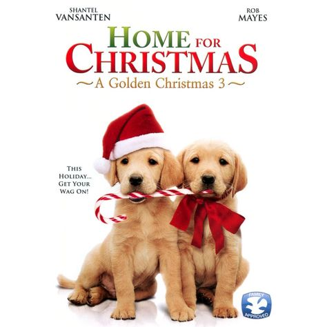 a golden christmas 3 full movie online free