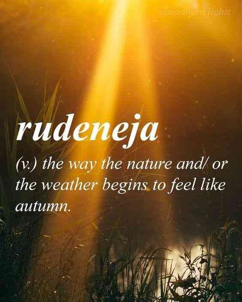 """""""Rudeneja (v.): the way the nature and/ or the weather begins to feel like autumn""""—Lithuanian word #fall #quotes #autumn #holidayseason #fallquotes #autumnquotes Follow us on Pinterest: www.pinterest.com/yourtango"""