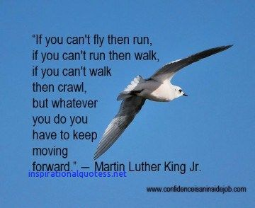 Inspirational Quotes About Birds Flying Quotes About Birds Flying Inspirational Quotes Quotes