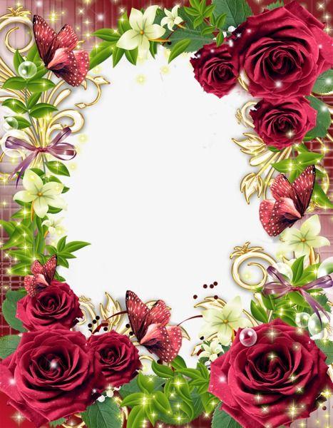 Flowers Background Border Flower Frame Red Roses Floral Border Design