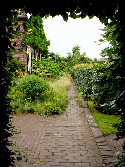Oudolf's personal garden in 2013, Hummelo, The Netherlands. photo Tony Spencer _/\/\/\/\/\_   Stepping through the portal: Kwekerij Oudolf