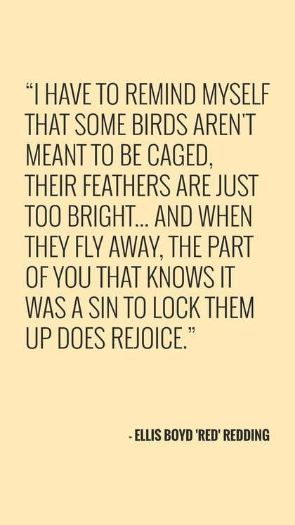 7 Shawshank Redemption Quote That Will Inspire You To Live Quotes Essay Hope