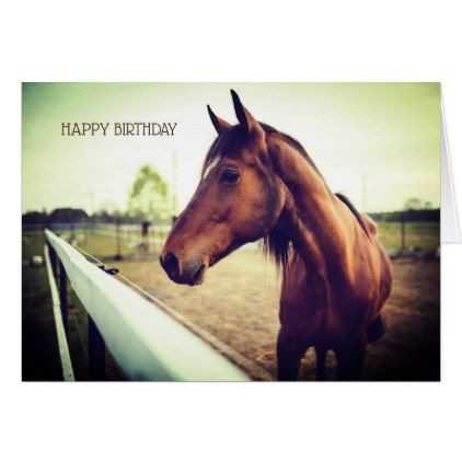 Brown Horse Happy Birthday Greeting Card Zazzle Com With Images