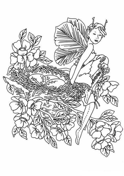 elfen und feen malvorlagen  fairy coloring pages horse