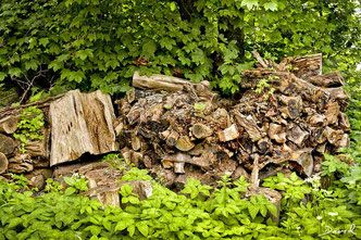 Totholz Holzstapel Holzstoss Holzstoss Naturgarten Wildlife Garden Wood Pile Log Pile Garten Naturgarten Holzstapel