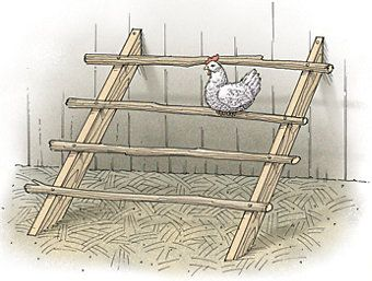 Build A Chicken Coop Spring 2008 Out Here Magazine Tractor Supply Co Portable Chicken Coop Diy Chicken Coop Chicken Diy
