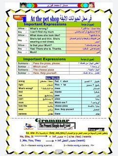 مذكرة اللغة الإنجليزية للصف الرابع الابتدائي الترم الاول 2021 مستر محمد فوزي Expressions Bullet Journal Journal