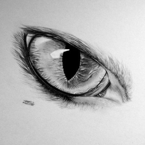 Dessin Noir Et Blanc Facile ▷ 1001 + photos de dessin noir et blanc qui vont vous aider à