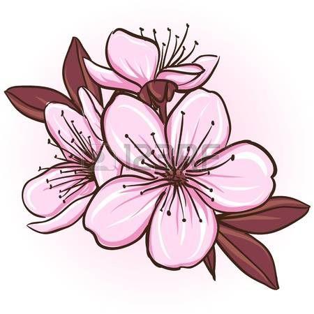 Image De La Categorie Cherry Blossom Illustration De Decoration Florale De Fleurs De Sakura Image 19601500 Cherry Blossom Vector Blossom Tattoo Flower Drawing