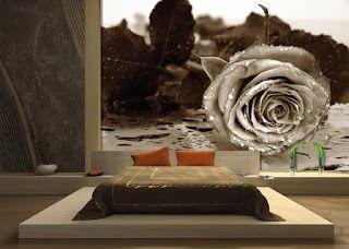 Wandgestaltung Schlafzimmer Fototapete