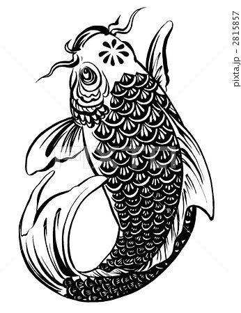 鯉のイラスト素材 2815857 Pixta 鯉の絵 鯉 イラスト